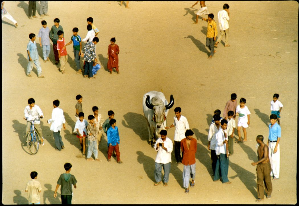 Mumbai - YMCA Ground